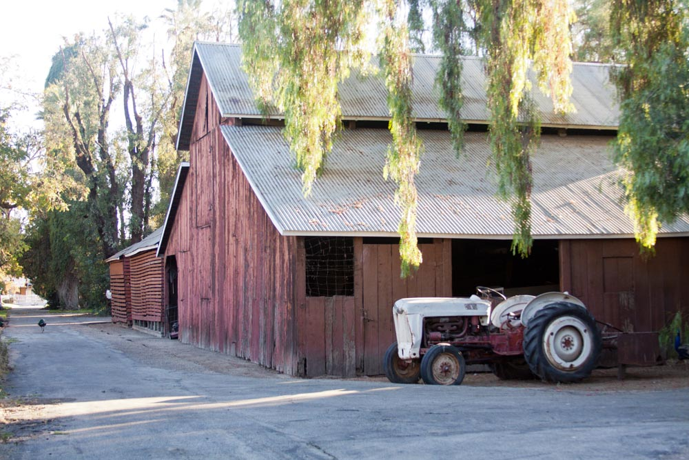 Large Barn with Tractor