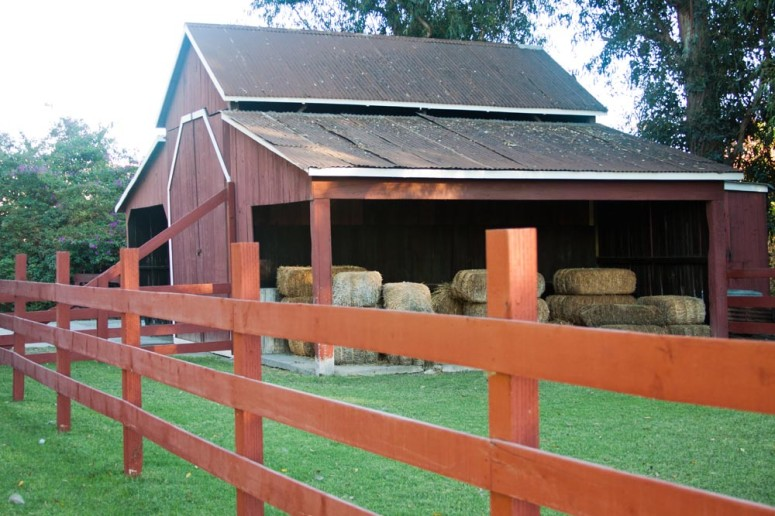 A Barn with hay and horse corral at Paddison Farm
